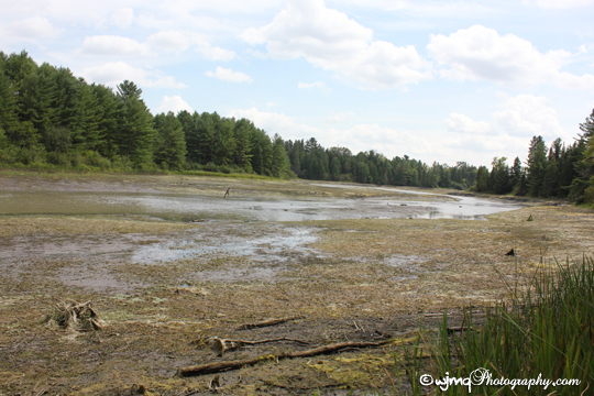 empty_river_IMG_4451