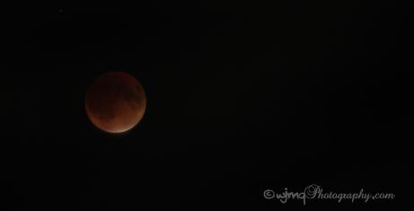 lunareclipse_IMG_5505