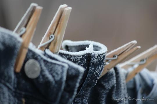 clothesline_IMG_6798