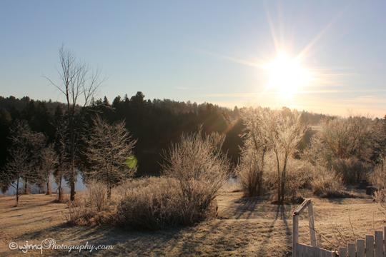 sunny_frosty_day_IMG_6940