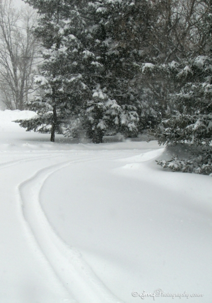 20160216_snowstorm_driveway_IMG_2133