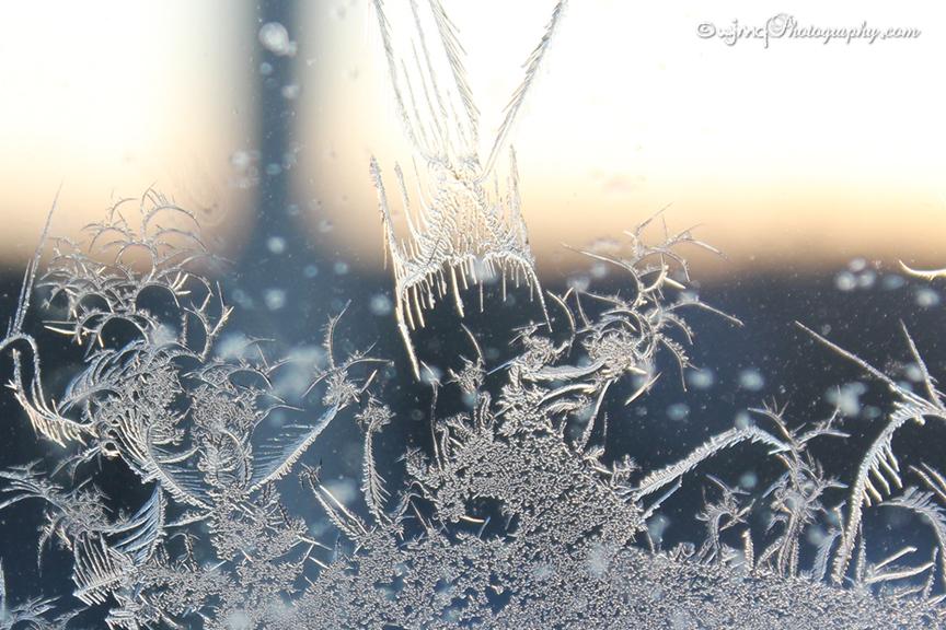 frostfaerie_7614-7
