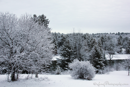 snowmar23_IMG_7919