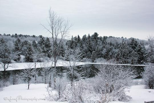 snowmar23_IMG_7921