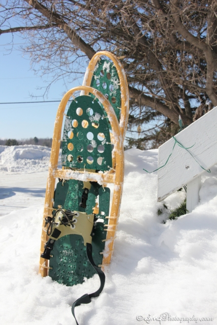 snowshoes_IMG_7683