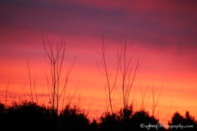 sunrise_IMG_7774